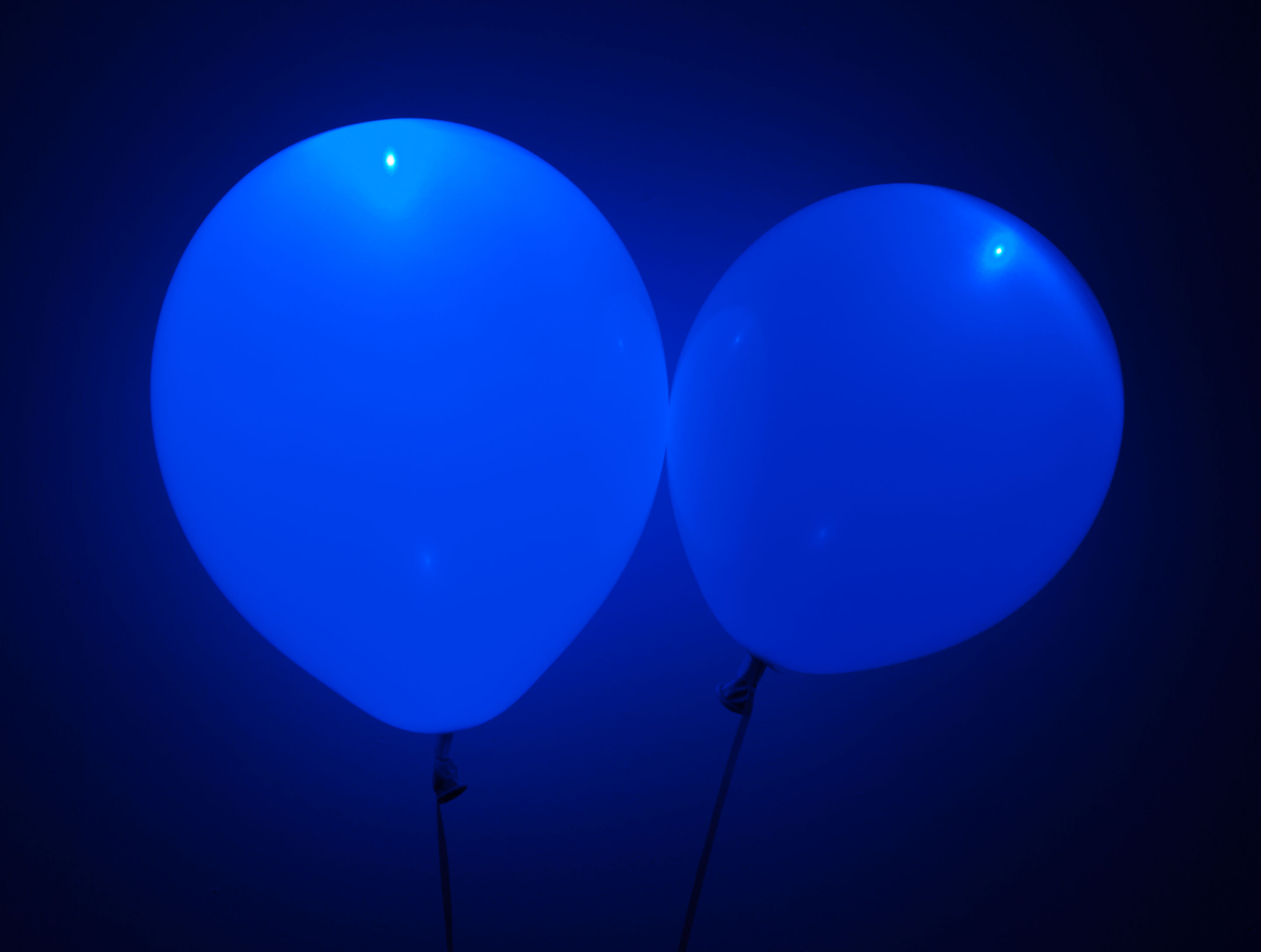 Blue Led Balloons Superior Celebrations